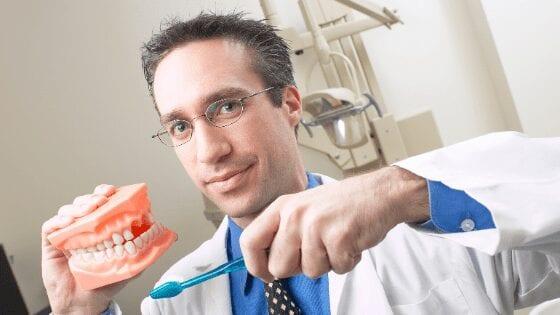 Dentist holding a set of teeth for dental hygiene sample.